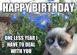 Grumpy Cat Meme Happy Birthday - happy birthday one less year i have to deal with you cheer up