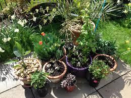 garden pots design ideas garden design garden design with plant pots garden pots melbourne