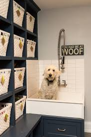 Bathtubs For Dogs 8 Tips For Installing A Dog Washing Station
