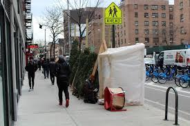 christmas tree brooklyn home facebook