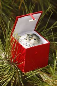 individual ornament gift boxes moments from nature philip sonier