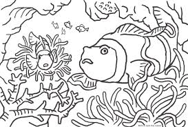 animal coloring pages jack the lizard wonder world