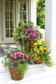 patio ideas patio garden ideas pinterest charming container