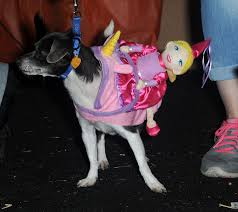 spirit halloween culver city these dogs dressed up in costumes for howloween will totally
