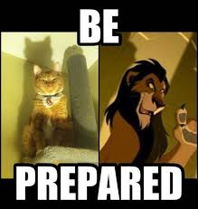Works For Me Meme - my cat tries to intimidate me by acting like scar and it works