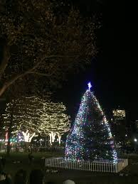 thousands of bostonians attend tree lighting ceremony the heights
