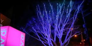 philips tree of light at sydney 2015