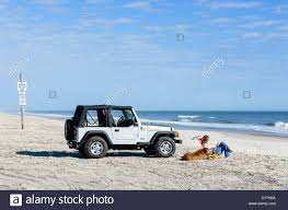 jeep wrangler beach young woman and her dog sitting by a jeep wrangler seaside park