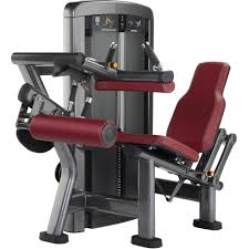 lifefitness insignia series seated leg curl shop online