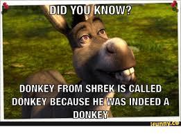 25 best memes about donkey funny donkey funny memes
