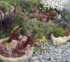 all about rock gardens