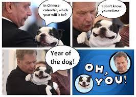 Oh You Dog Meme - oh you dog meme imgur mne vse pohuj