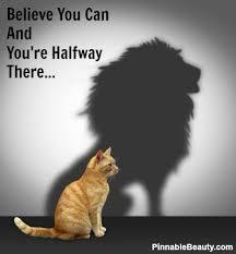 Positive Thinking Meme - believe you can cat meme cat