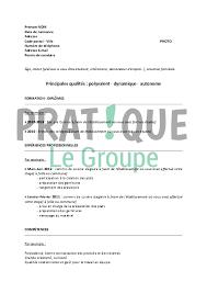 comp騁ences commis de cuisine modèle de cv pour un bts hôtellerie restauration pratique fr