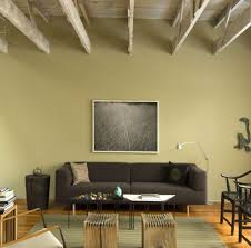 Green Wall Paint Lemon Green Wall Paint Living Room Traditional With French Door