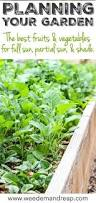 412 best vegetable gardening images on pinterest gardening