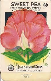 vintage seed packets sweet magnolias farm antique seed packet printables sweet pea