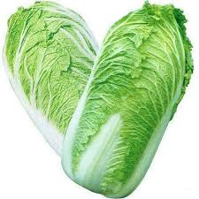 cabbage china china cabbage at rs 80 kilogram ahmedabad id 15038975962