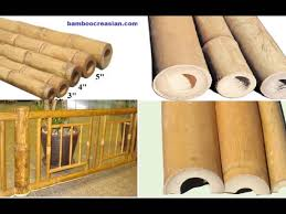 buy bamboo poles sticks for decorations decorative bamboo poles
