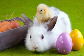 easter pictures easter 2018 is on april fool s day simplemost