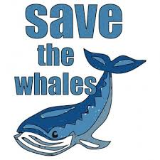 save the save the whales stephen poetry