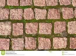 Granite Patio Stones Granite Pavers With Grass Stock Photo Image 28799520