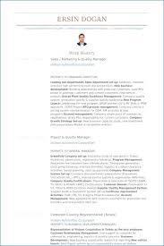 marketing executive resume marketing executive resume artemushka