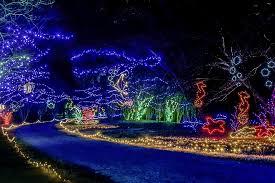 christmas light displays in virginia norfolk botanical garden christmas lights pinterest norfolk