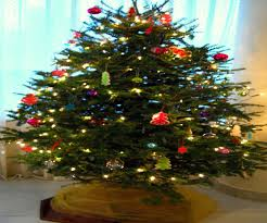 Menards Christmas Trees White by Artificial Christmas Trees At Menards Best Images Collections Hd