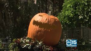 roku halloween background halloween time at the disneyland resort abc15 arizona