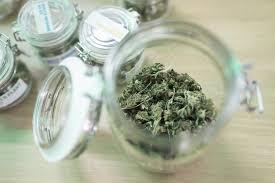 cannabis stern de