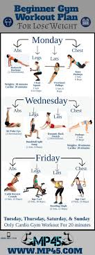 lose weight programs gym beginner gym workout plan for lose weight visual ly