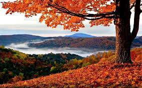 Why Fall Is The Best Season Fall Is The Best Season Home Facebook