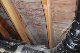 ultimate attic insulation ted u0027s energy tips