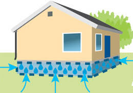 what to look for in a basement and crawl space dehumidifier