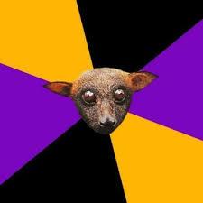 Bat Meme - create meme engineering student bat bat pictures meme