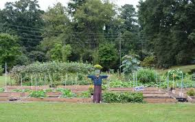 Raleigh Botanical Garden Agriculture Grant Winners Announced At 2016 Raleigh