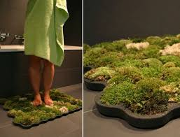 best 25 moss bath mats ideas on pinterest shower mats green