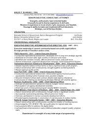 resume templates executive executive director resume template twhois resume non profit program director resume sample non profit executive with regard to executive director resume template