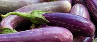 cuisine aubergines recettes d aubergines et de cuisine végétarienne