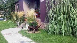 Wooden Wheelbarrow Planter by Wheelbarrow Planter Ideas Garden U0026 Yard Pictures Designing Idea