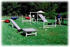 Dog Playground Equipment Backyard by Our Dogs Will Have Something Like This This Summero Dog Agility