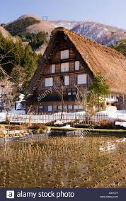 traditional japanese village house with thatched roof with rice