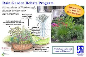 native plants list rain garden plant list 6 best garden design ideas landscaping