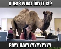 Payday Meme - best 25 rf payday ideas on pinterest rodan and feilds rodan