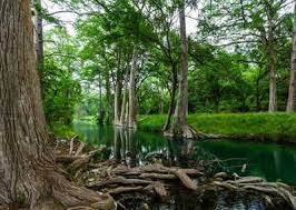 Land For Sale Comfort Texas Land For Sale In Comfort Texas Page 1 Of 3 Lands Of Texas