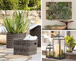 5 unconventional succulent planter ideas pottery barn