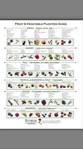 best 25 vegetable planting guide ideas on pinterest organic