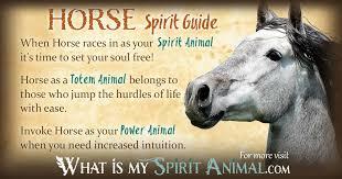 horse symbolism u0026 meaning spirit totem u0026 power animal