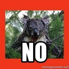 Angry Koala Meme - angry koala baby meme generator